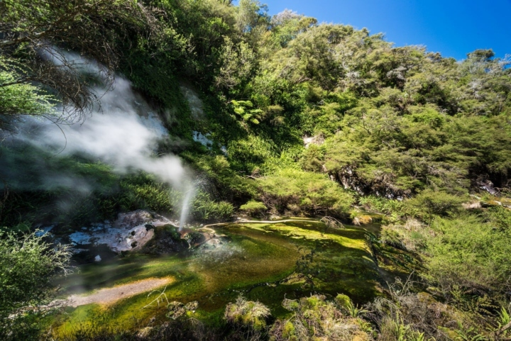 Smoking geyser creating a yellow, green and blue river in Way-o-Tapu, New Zealand