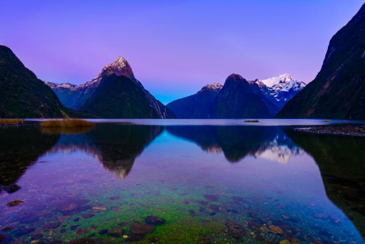Pink sunrise on Milford Sound, with green rocks in the foreground leading to snowy Mitre Peak. Perfect reflexions