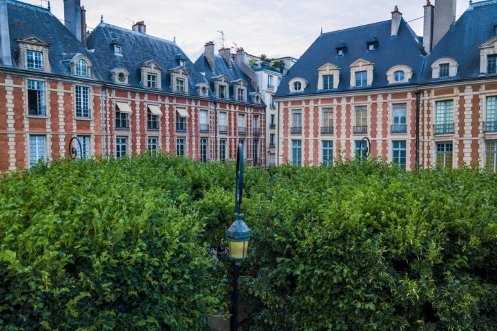 lampadaire encastré dans des arbres sur la place des vosges, Paris